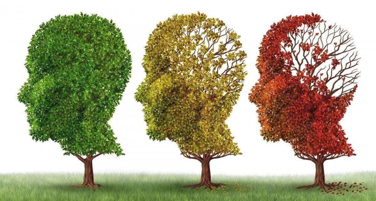 Afeccion del Alzheimer