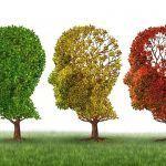 Alteraciones de la conducta más frecuente en personas que padecen la enfermedad de Alzheimer