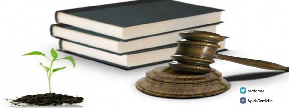 Formas de constitución del patrimonio de personas dependientes