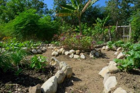 Jardín terapeútico para enfermos con demencia