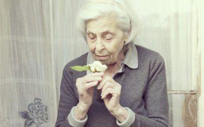 El papel del cuidador en la demencia senil