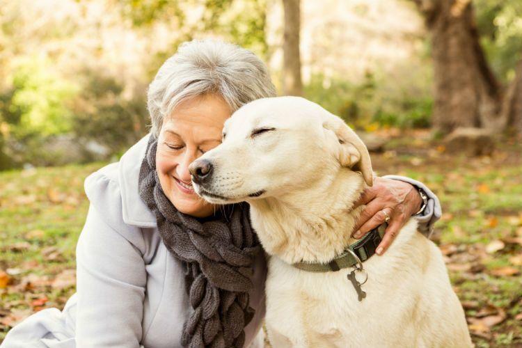 Cómo pueden los perros ayudar a las personas con Alzheimer